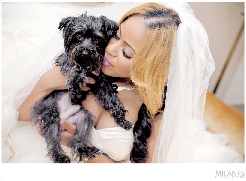 bride_portrait_dog